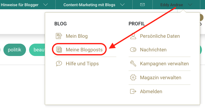 Screenshot: Meine Blogposts